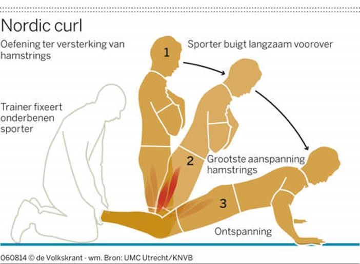 Nordic curl